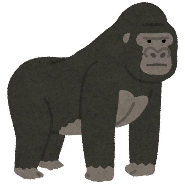 animal_gorilla.png